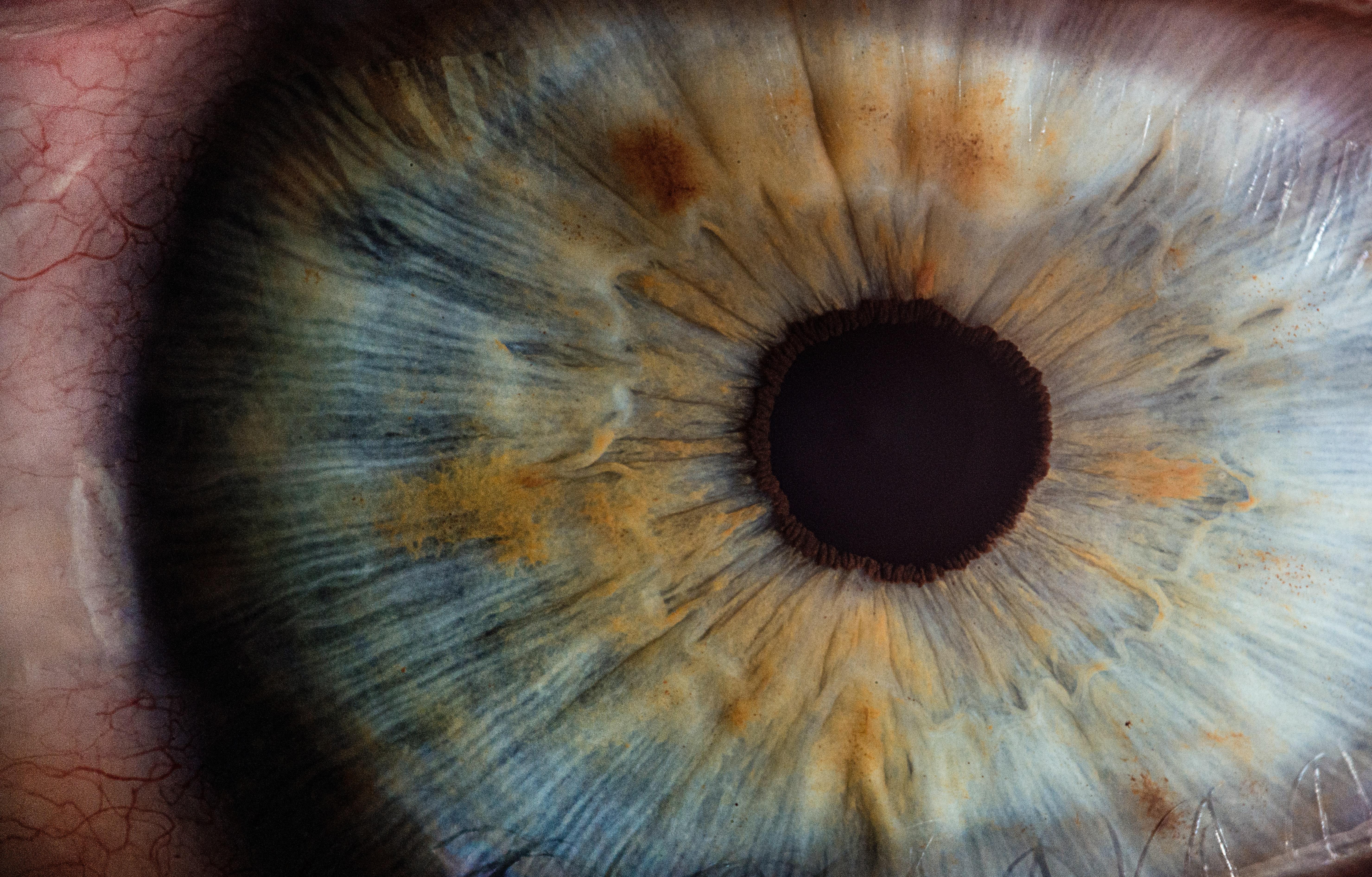 eyehealt.jpg